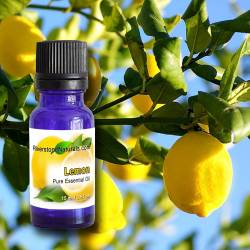Essential Oil - Lemon...
